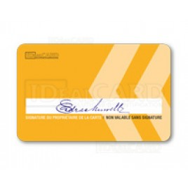 Cartes PVC piste signature